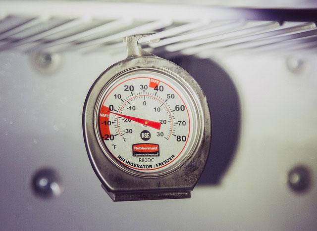 best refrigerator thermometer