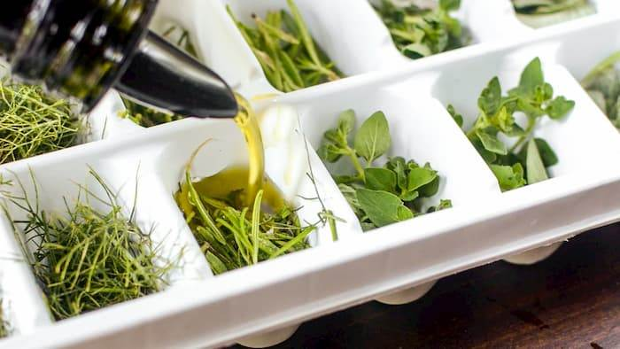 Ice Cubes for Herbs
